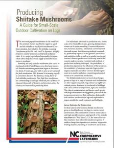 Shitake-Mushroom-Cultivation