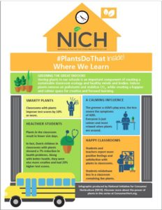 Infographic - Plants do that where we learn