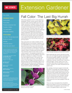 Fall Piedmont cover page