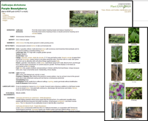 Example of Plant Fact Sheets