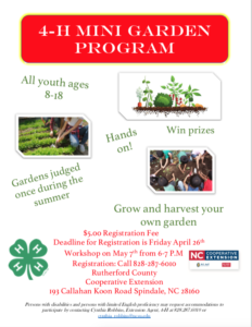 Flyer for mini-garden