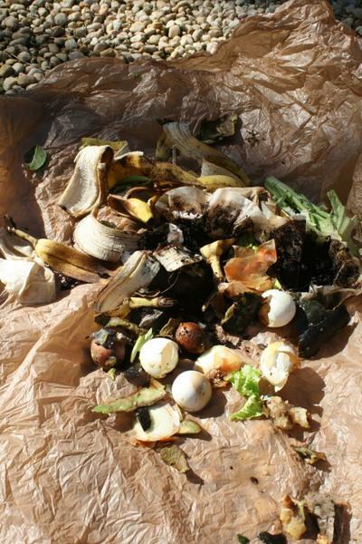 """Kitchen scraps """"greens"""" ready for the compost pile. Photo: Chris Alberti CC BY - 2.0"""