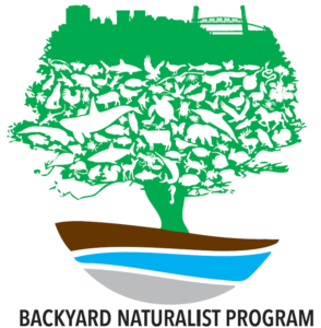 backyard naturalist logo