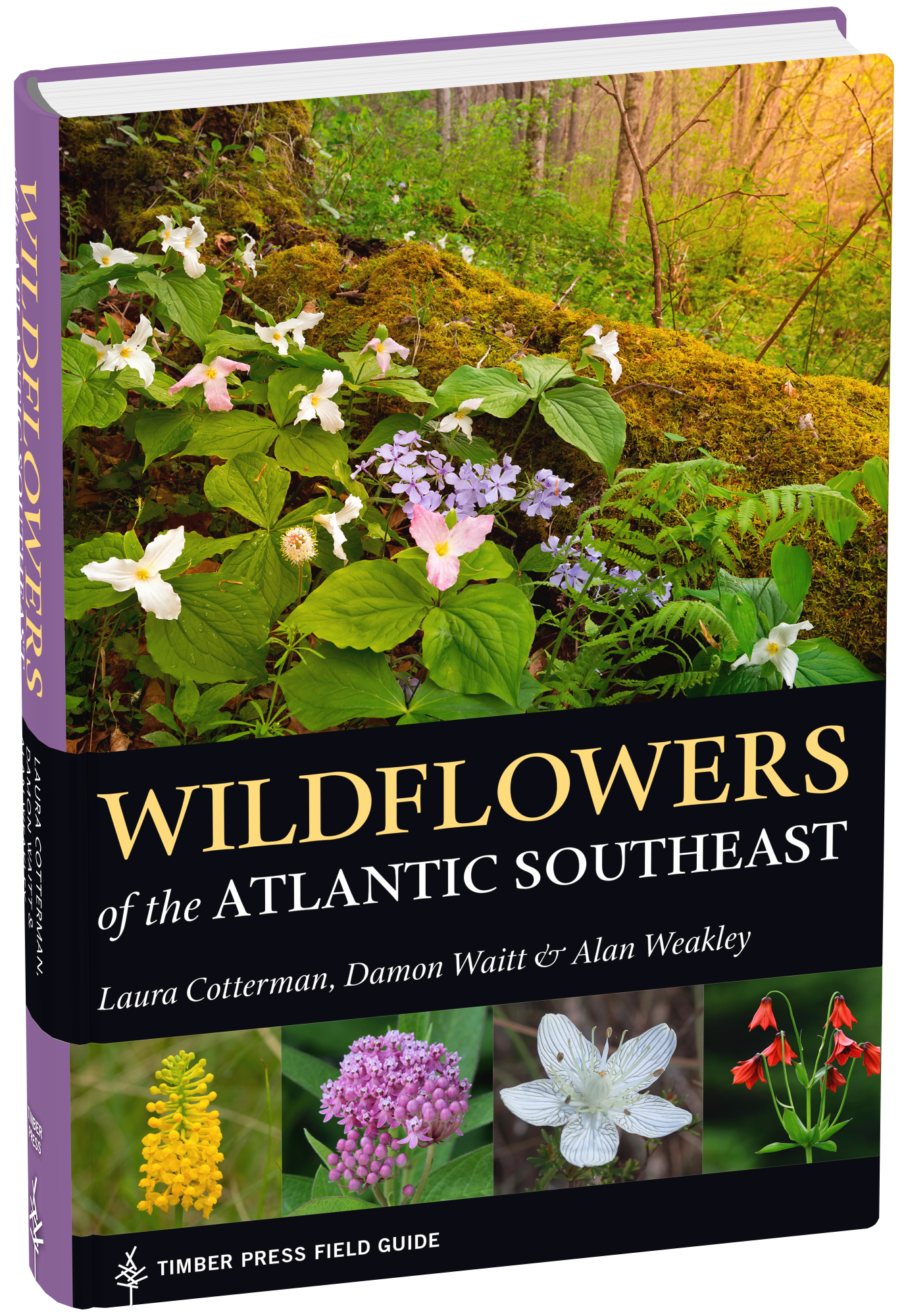 Book cover: Wildflowers of the Atlantic Southeast